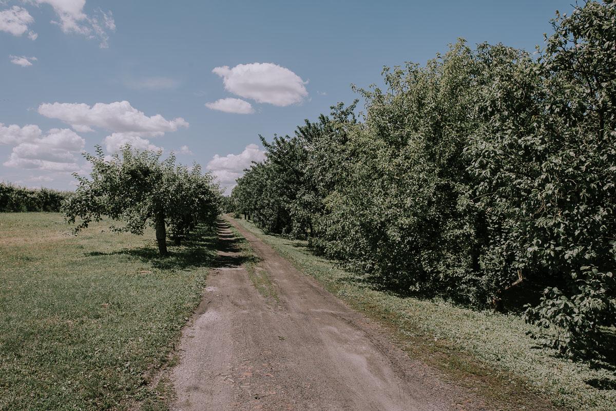 Fotografia-slubna-Bydgoszcz-Swietliste-fotografujemy-emocje-Kosciol-Michala-Archaniola-Wtelno-Stary-Mlyn-Wierzchucice-Joanna-Dawid-011