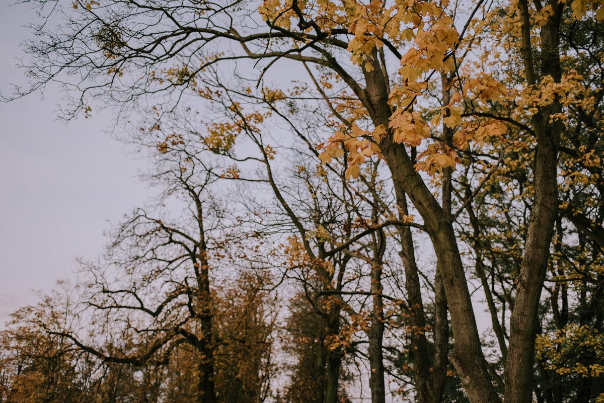 fotografia-slubna-Bydgoszcz-plener-slubny-Palac-Romantyczny-Turzno-Ola-Damian-016