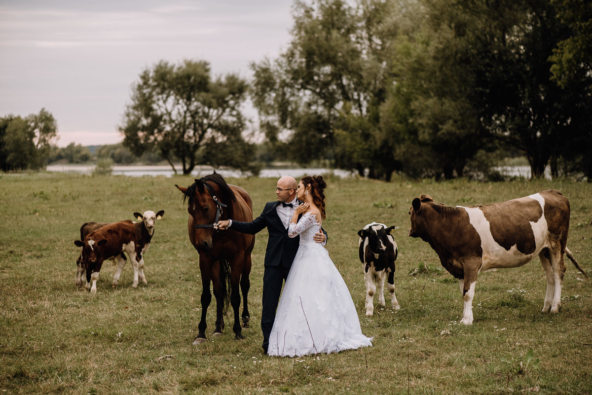 naturalna-sesja-penerowa-na-wsi-konie-krowy-kujawsko-pomorskie-Daniela-Maciej-019