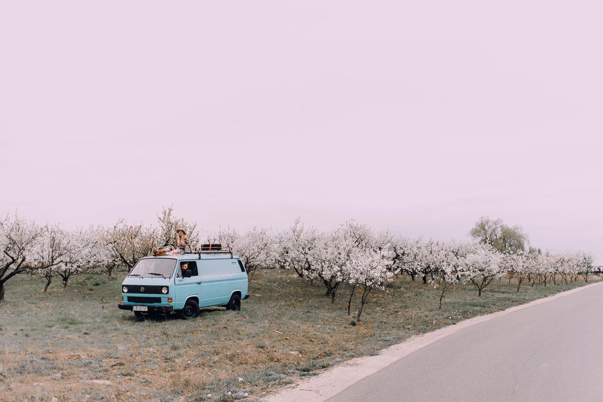 swietliste-wiosenna-sesja-narzeczenska-boho-kwitnacy-sad-VW-Transporter-T3-Bydgoszcz-Joanna-Marcin-005