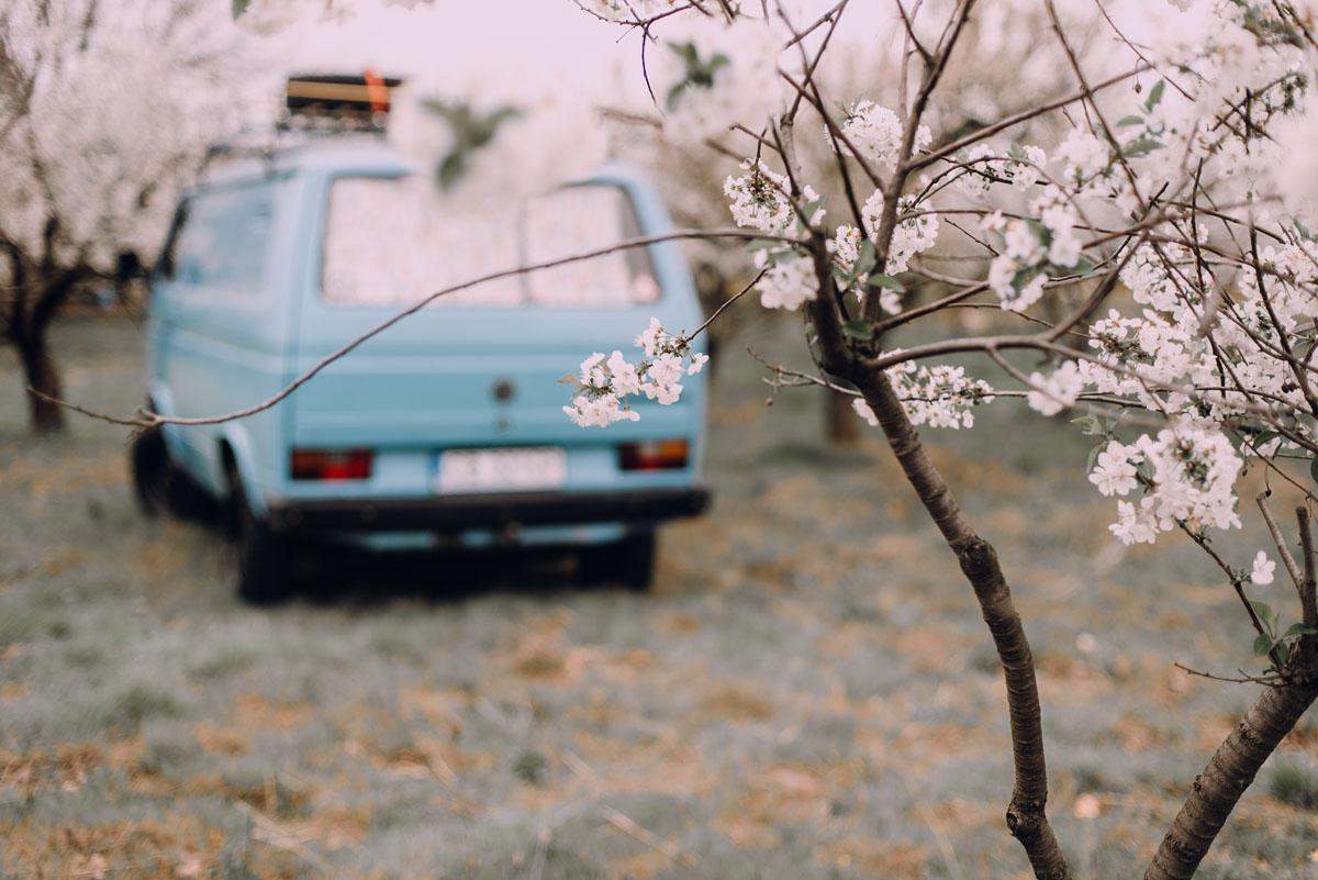swietliste-wiosenna-sesja-narzeczenska-boho-kwitnacy-sad-VW-Transporter-T3-Bydgoszcz-Joanna-Marcin-015