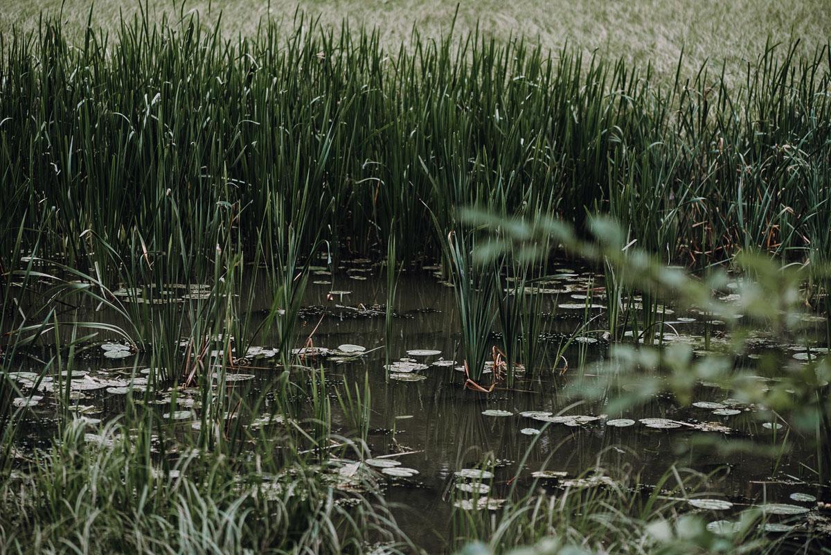 lesny-plener-slubny-Bory-Tucholskie-swiece-dymne-Paulina-Pawel-022