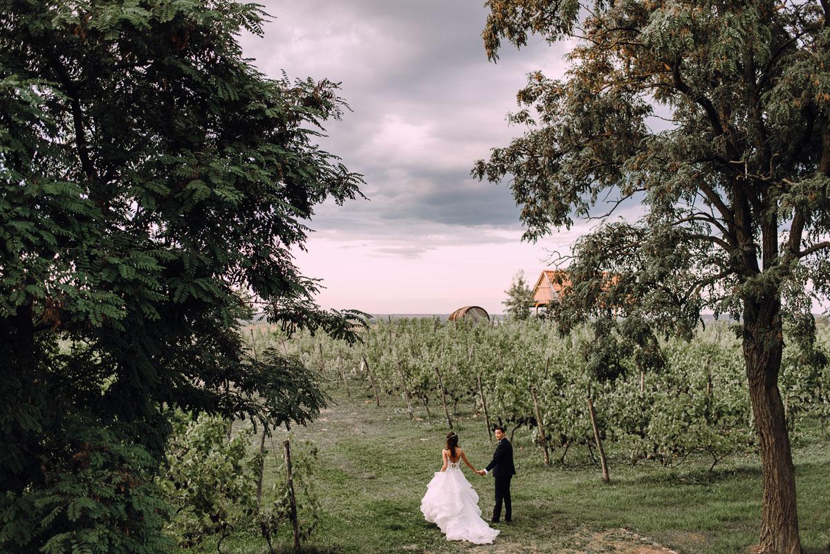 sesja-slubna-w-winnicy-pradolina-Dolnej-Wisly-Winnica-przy-Talerzyku-Topolno-Asia-Marek-010