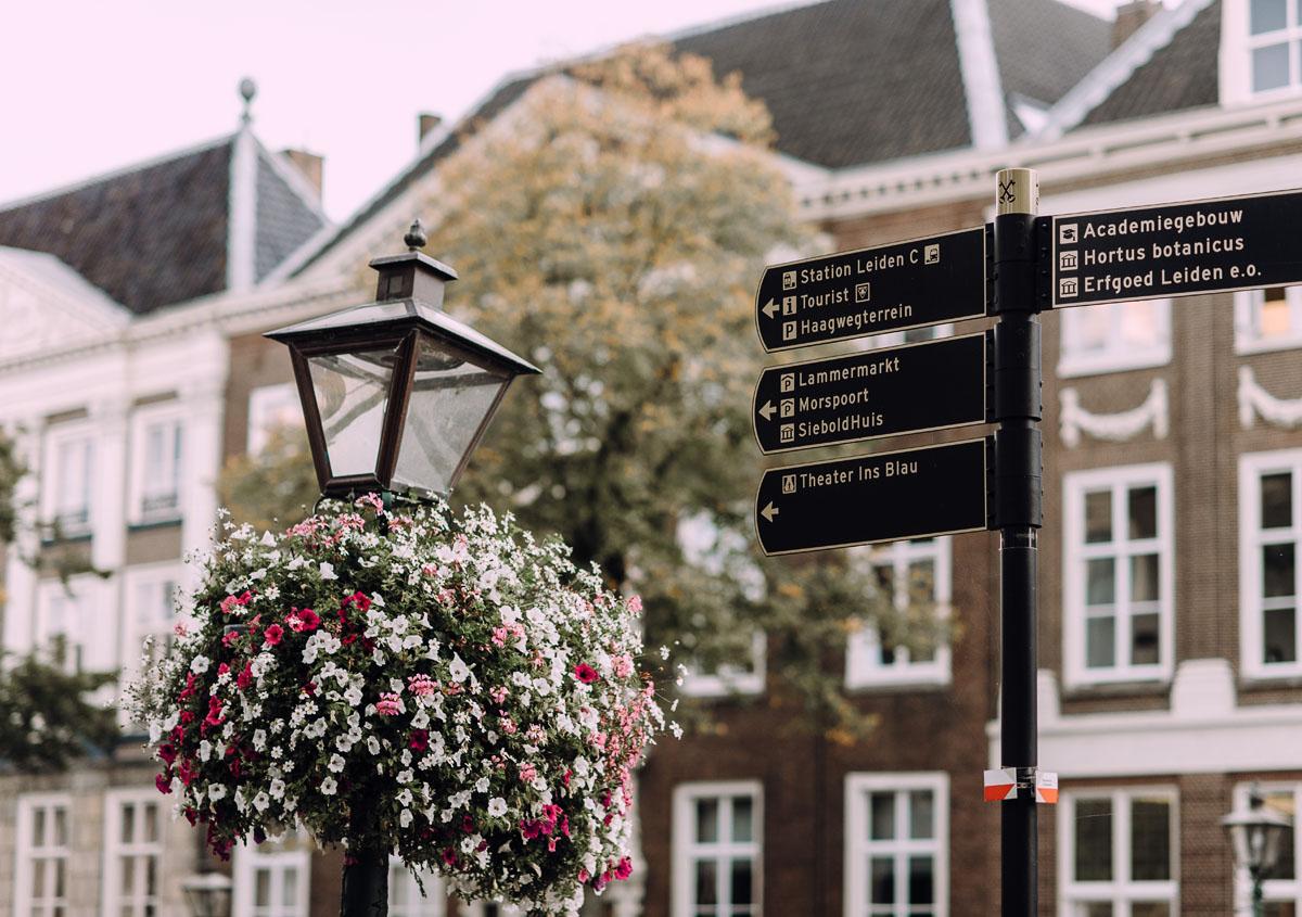 sesja-slubna-Niderlandy-plener-slubny-Leiden-Holandia-Ania-Mark-028